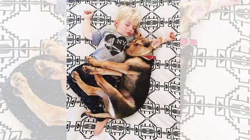 一起午睡吧!超療癒的男孩與狗午睡時光