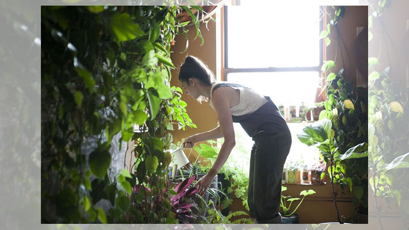 她利用500種不同的植物,把自己的公寓打造成室內叢林!