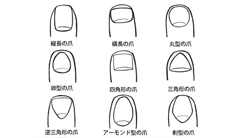 日本超夯「指甲診斷」,快來測試吧!